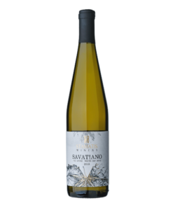 savatiano stamatis winery 1